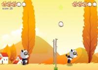 Panda i Jaja